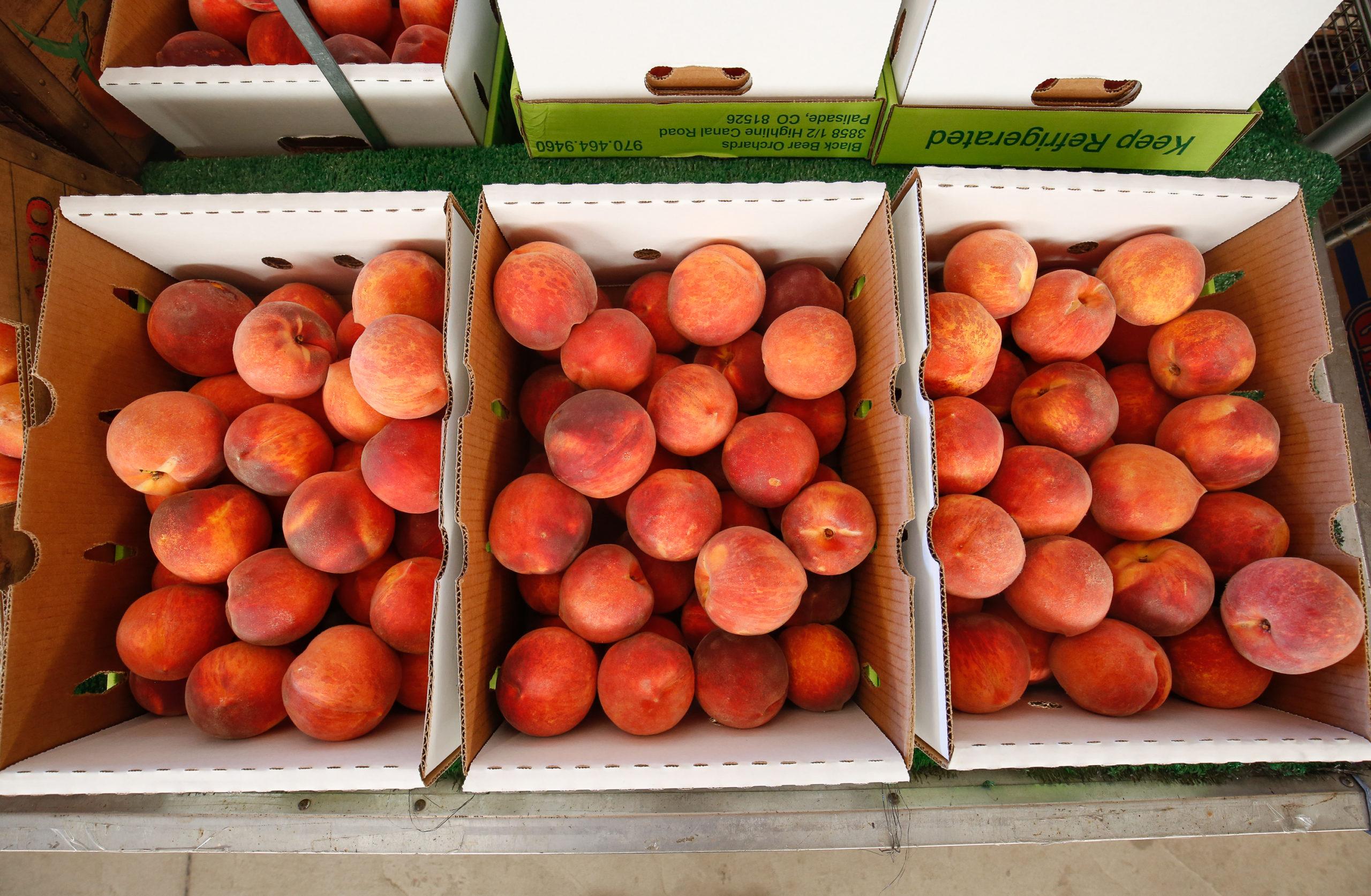 Palisade peaches